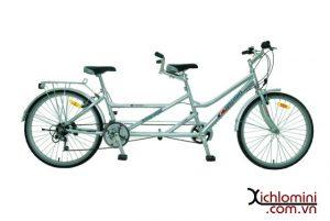 xe đạp đôi người lớn asama