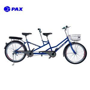 xe-dap-doi-pax-8b